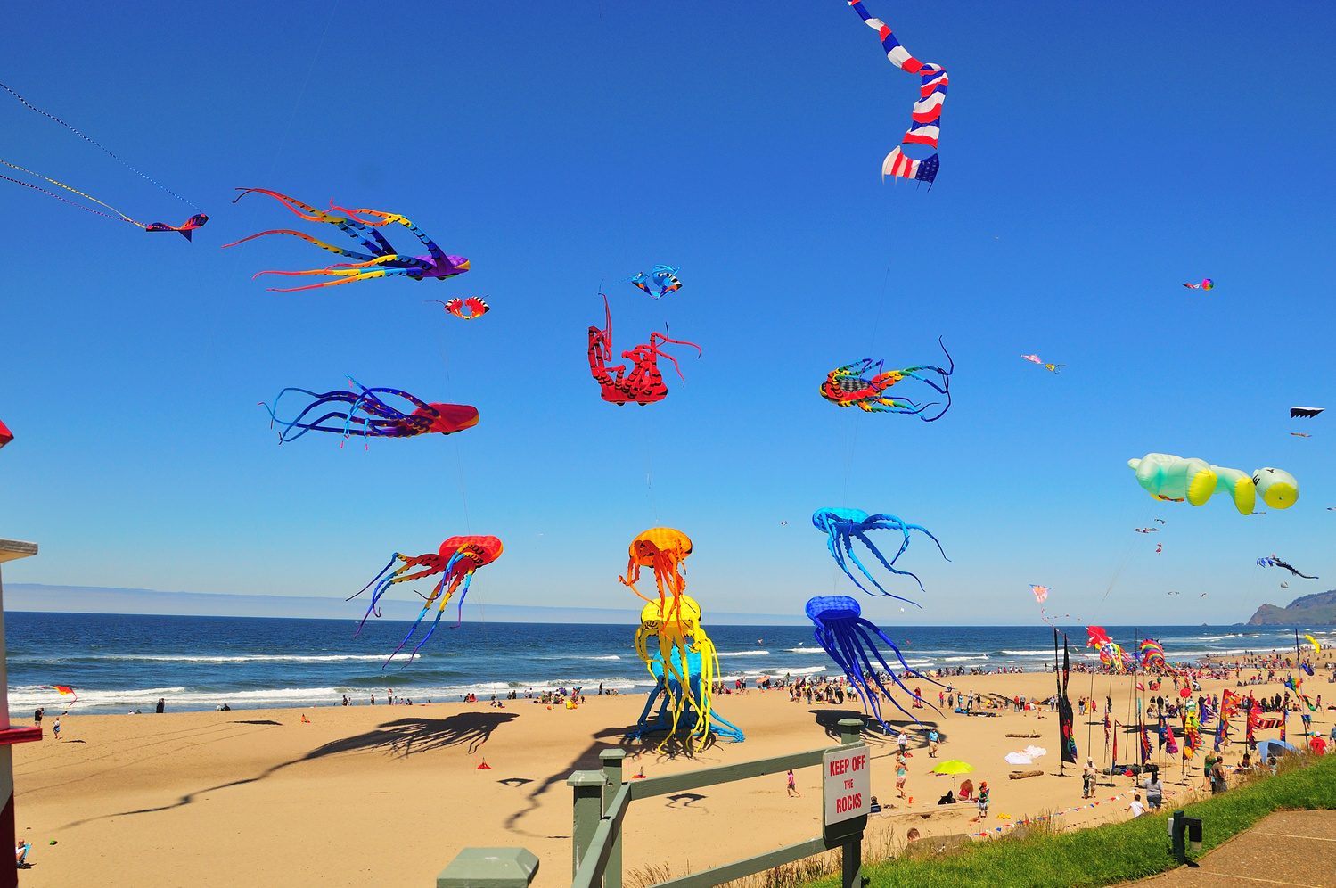 Lincoln City Kite Festival by Leroy Brown