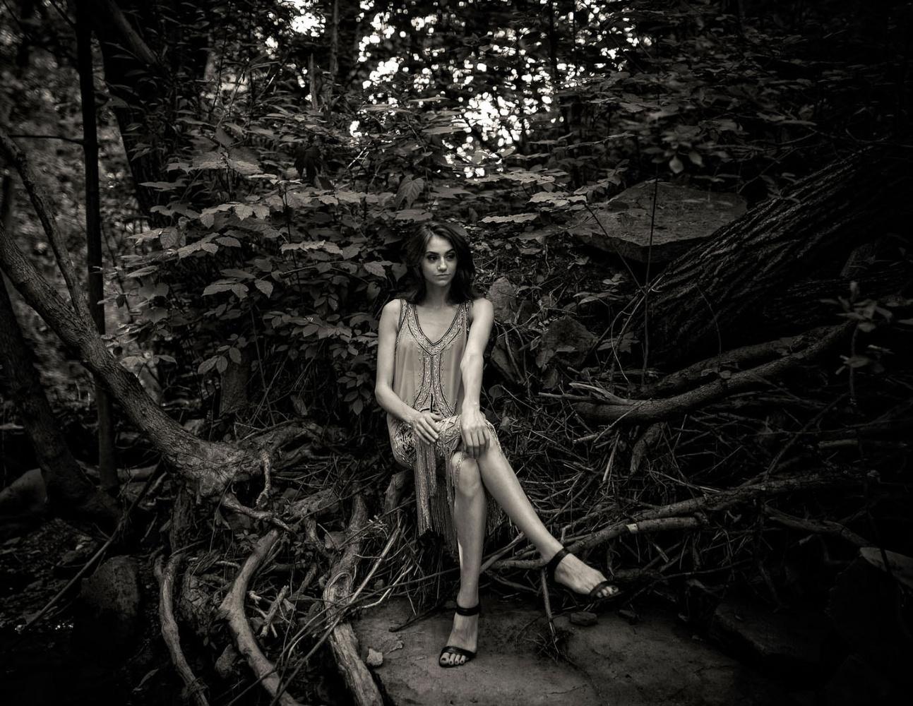 Forest Fashion by Ian Pettigrew