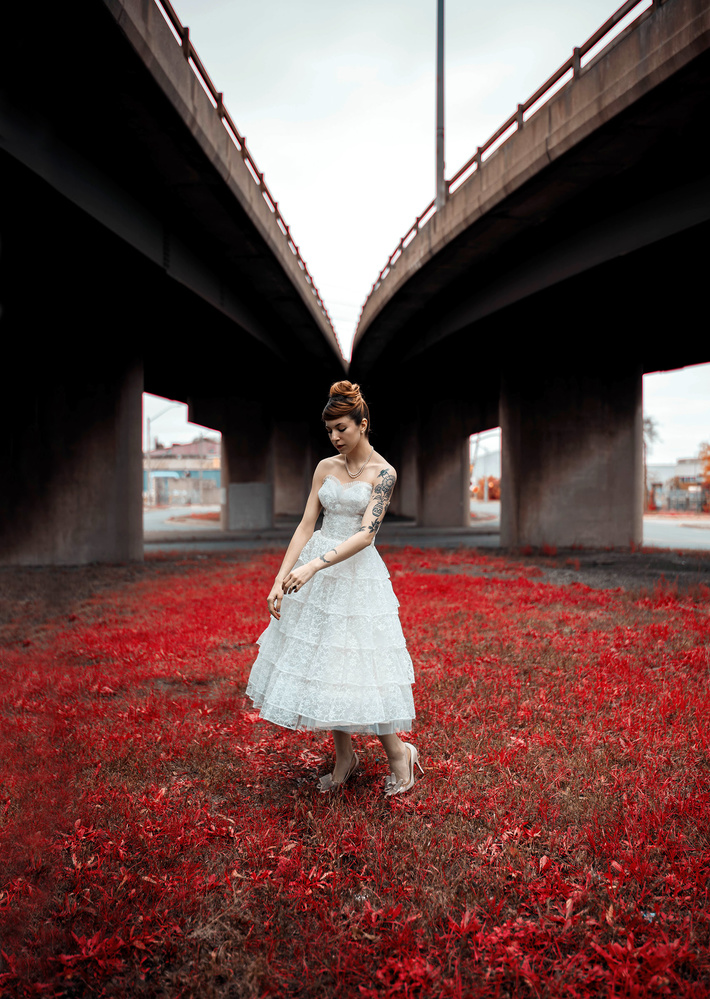 overpass, red2 by Ian Pettigrew