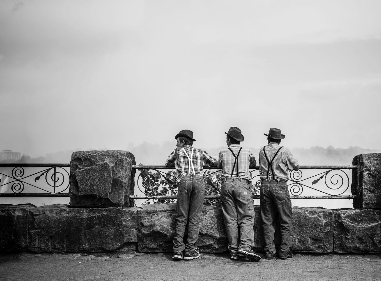 The Mennonites at Niagara by Ian Pettigrew