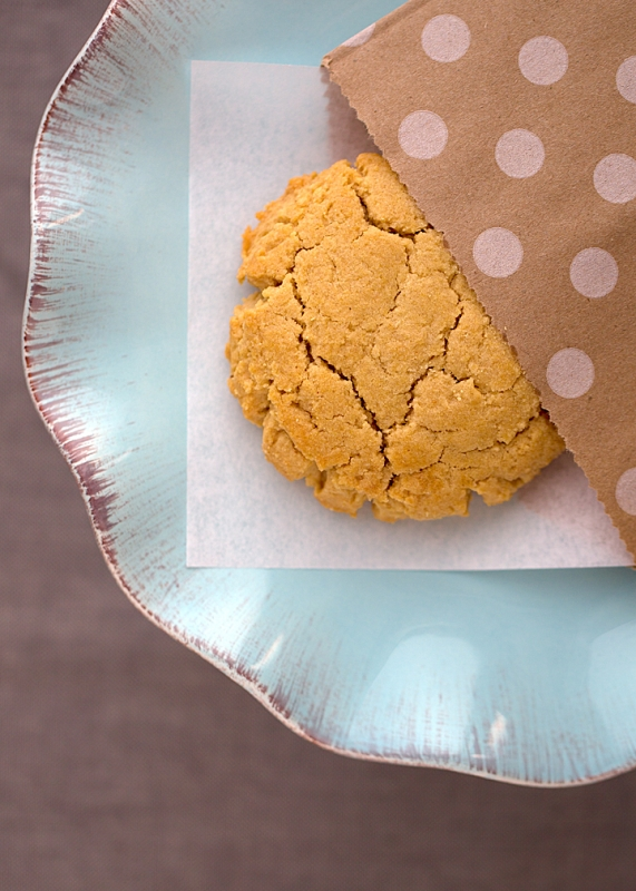 Treatbox Peanut Butter Cookie by Brandy Yowell