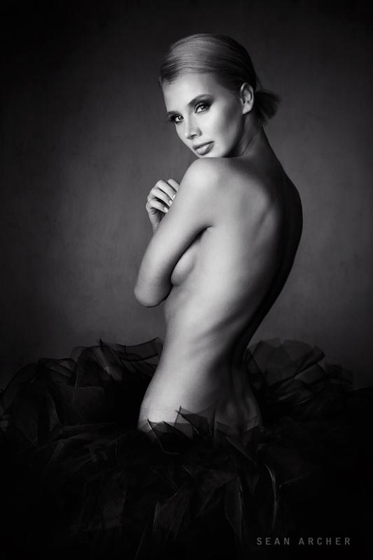 Black Swan by Sean Archer