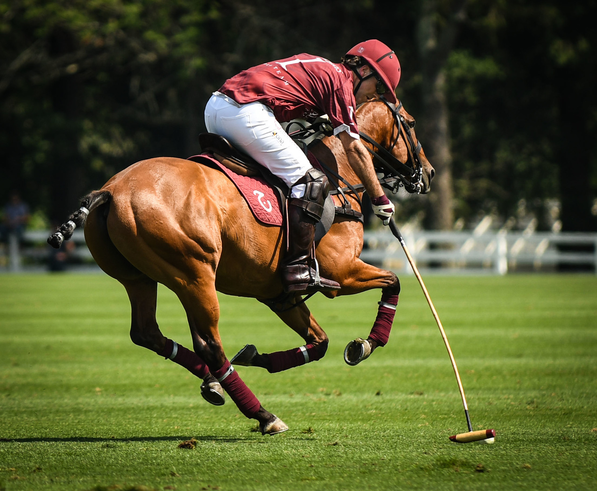 Greenwich CT Polo Club - Summer Afternoon by Douglas Turney