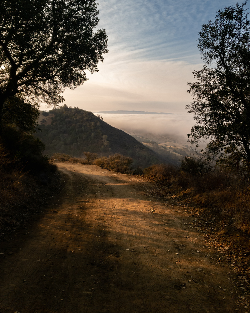Wall Point Road Trail by Robert Parker