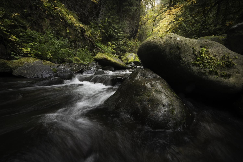Peaceful Serenade... by Kevin Evans