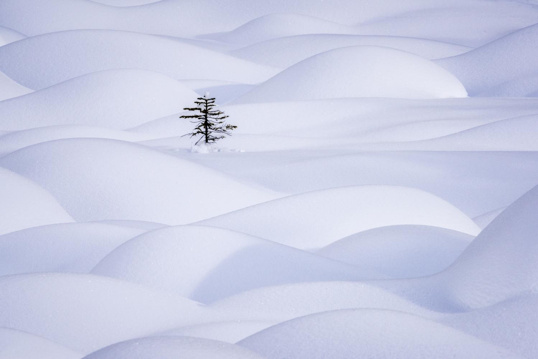 Solitude... by Kevin Evans