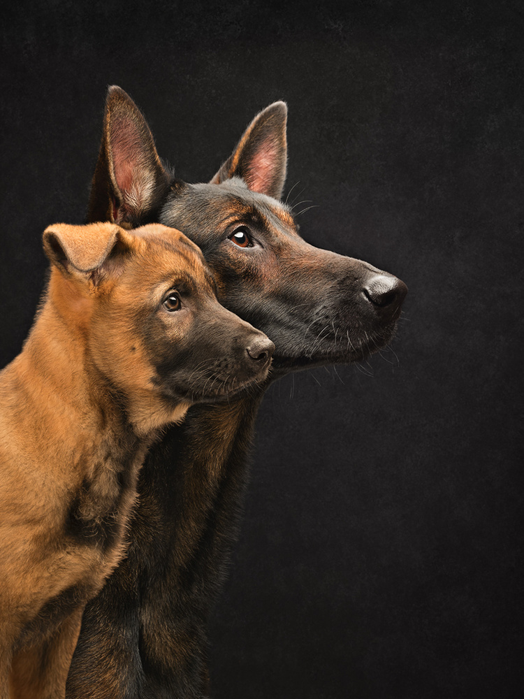 Father and son by Elke Vogelsang