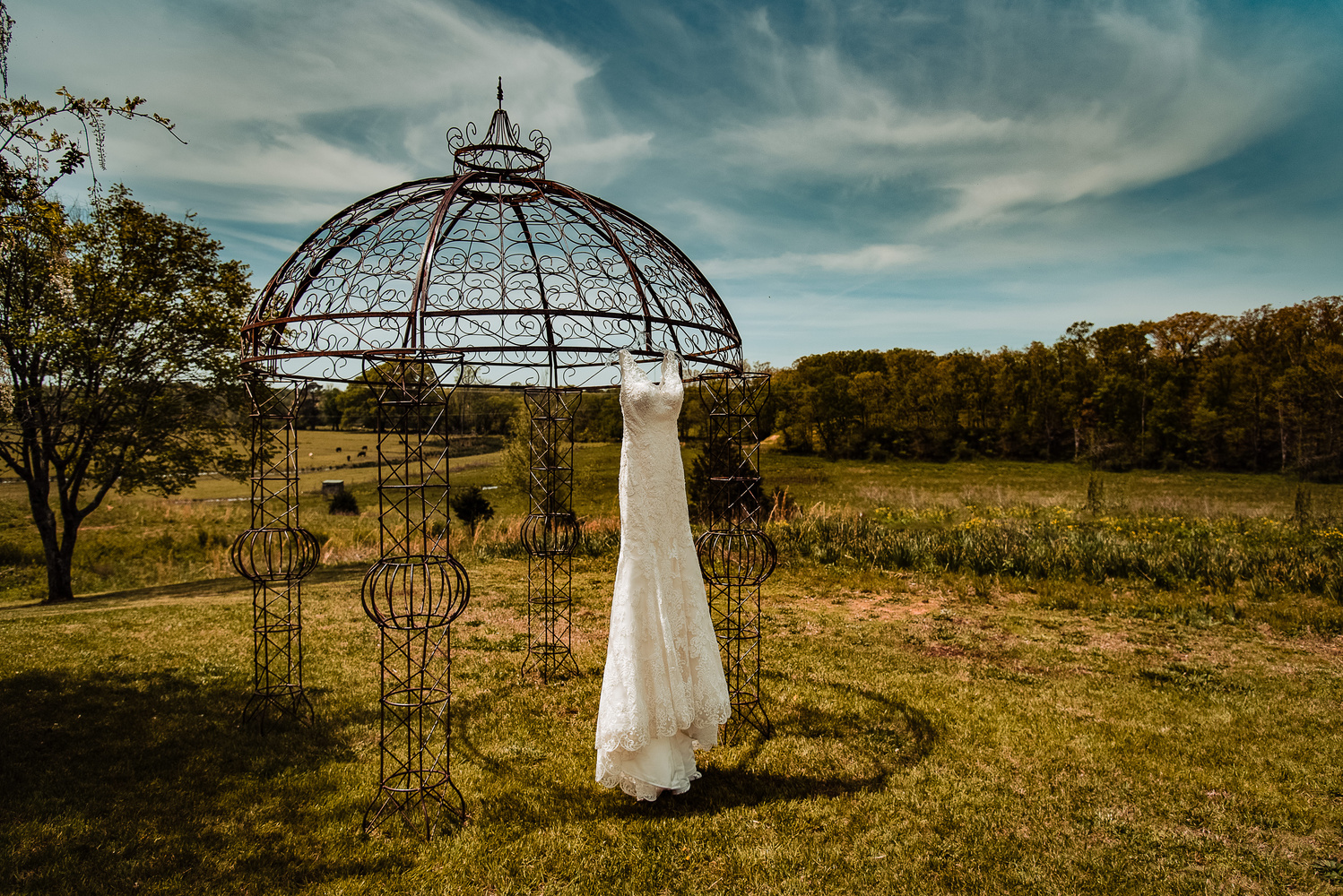 The Iconic Wedding Dress by Bill Wells
