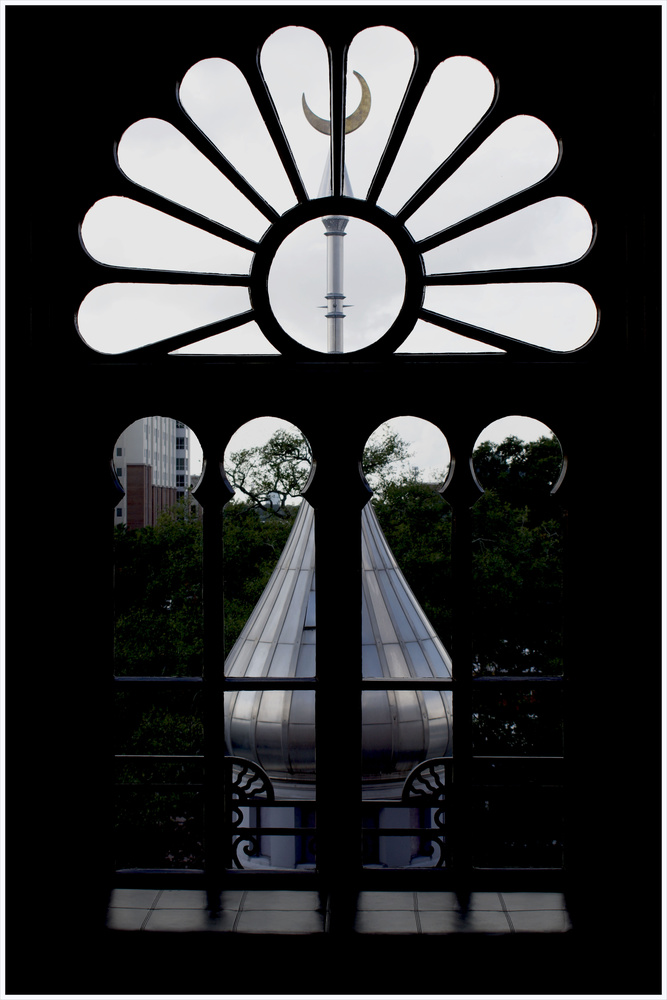 View from the Window by J Sclafani
