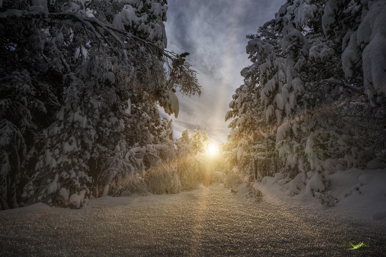 Snowboost by Carlos Santero
