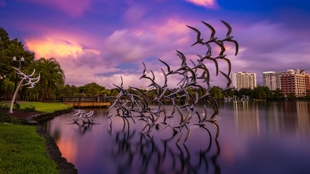 Take Flight by Wayne Denny