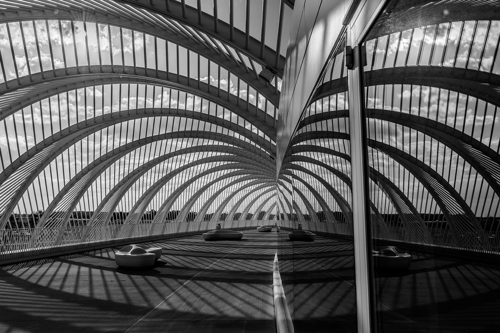 Florida Polytechnic University by Wayne Denny