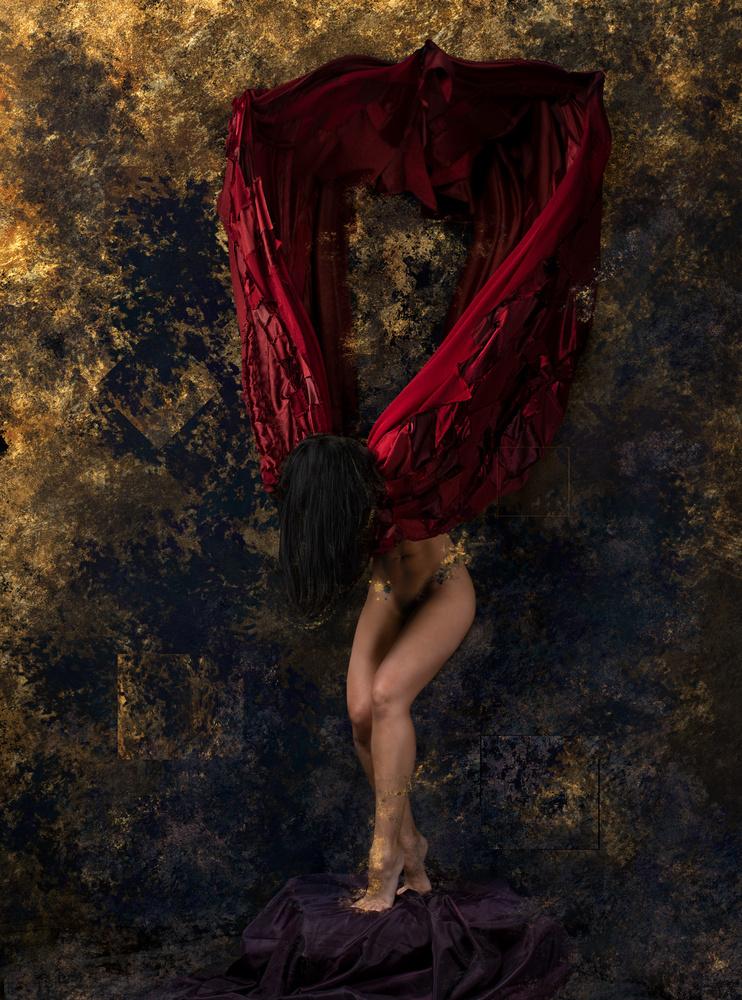 Midnight Dove by Jason Matias