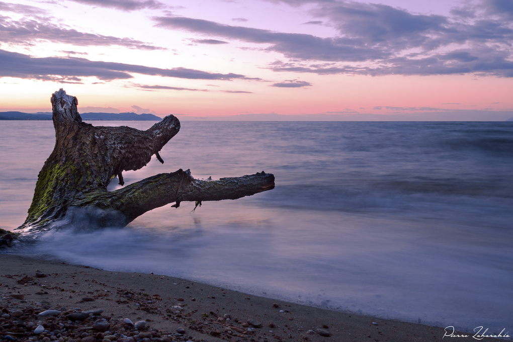Purple Sunrise by Pierre Zaharakis
