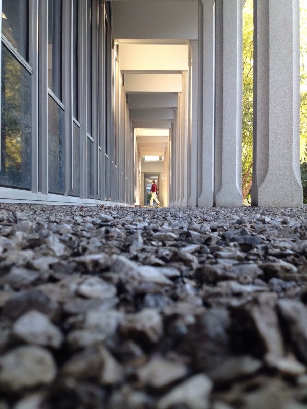 Campus Life by Andrew Griswold