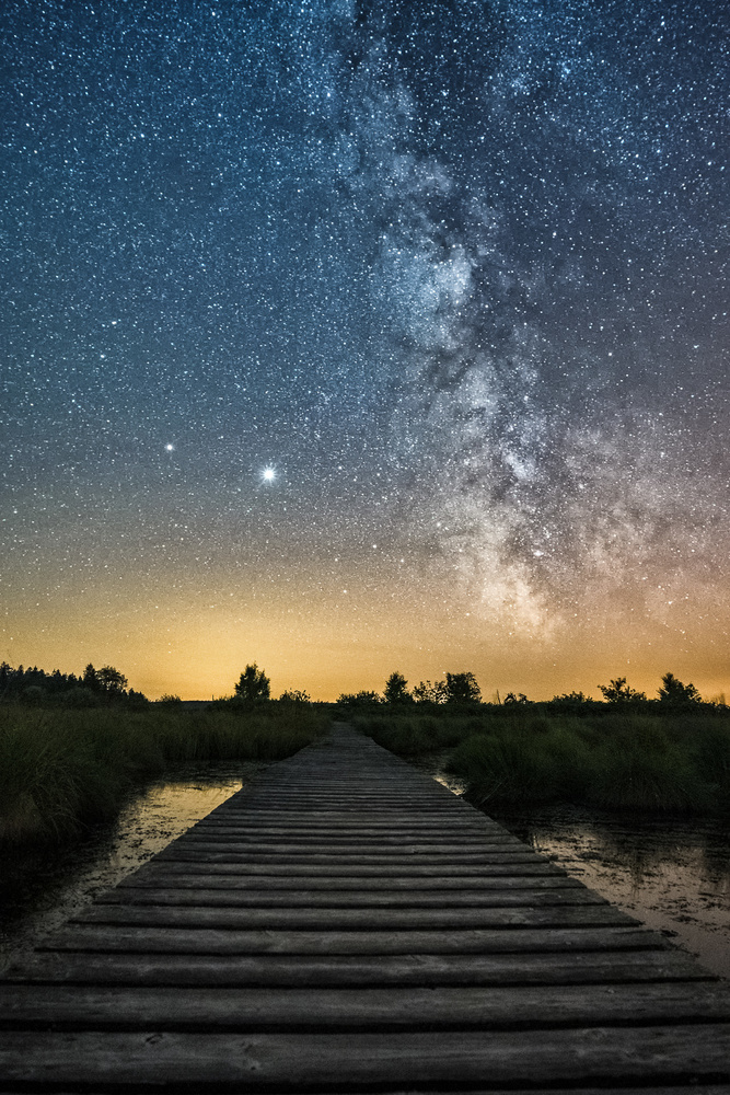 Milky way in the swamp by Christian Böcker