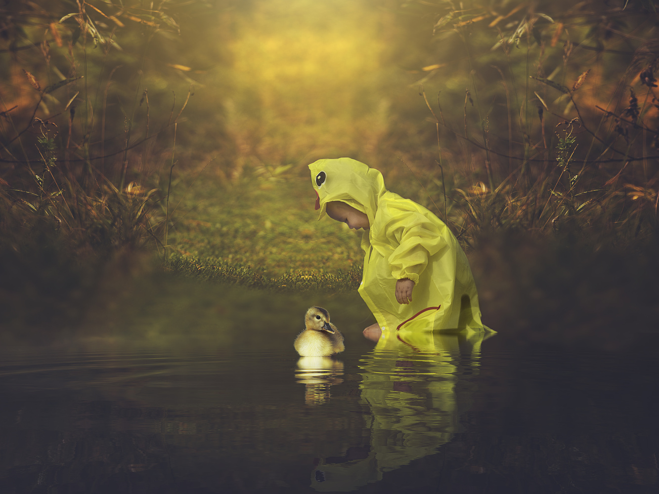 Puddle duck by Michelle Goodall