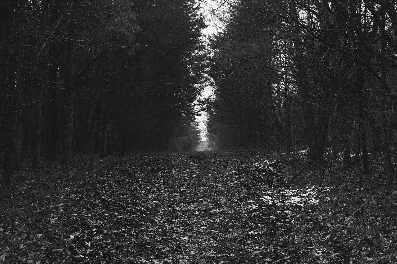 Alone by Cody Schultz