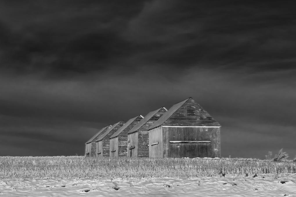 5 sheds by John Berger