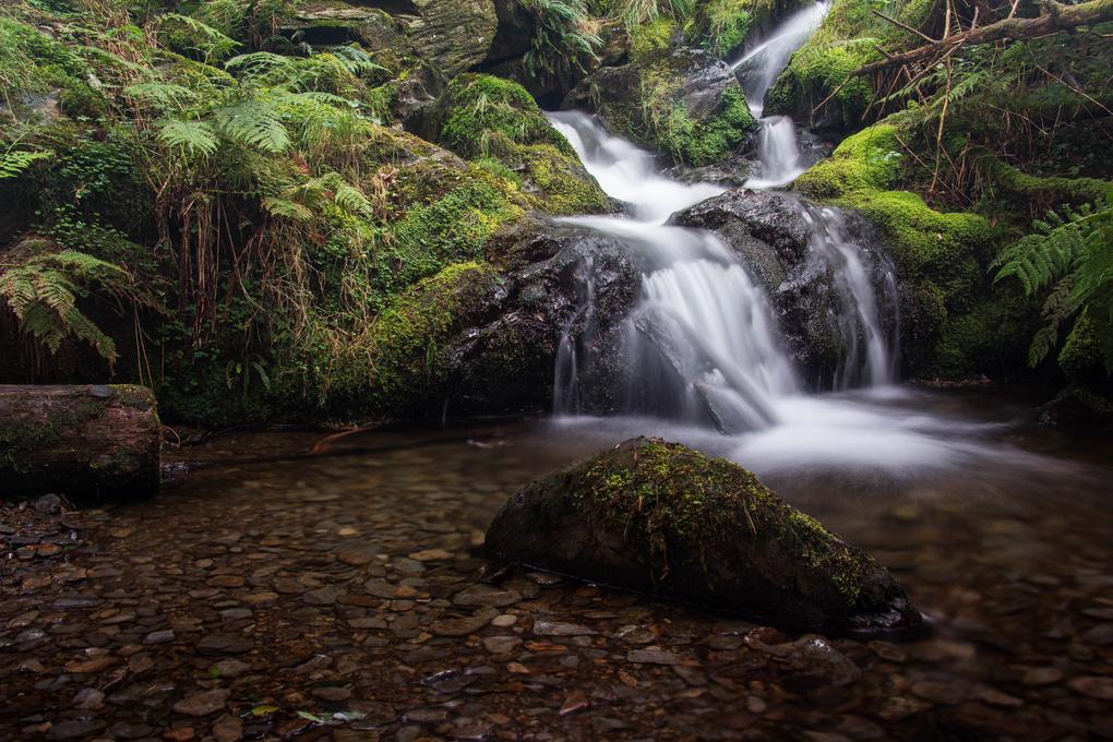 Be Water My Friend by Daniel Jeavons
