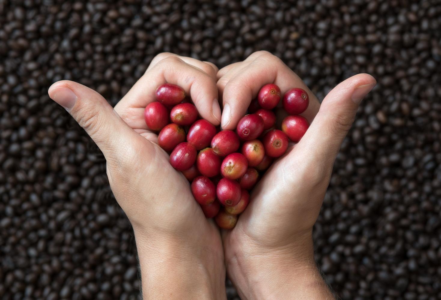 I heart coffee by Kim Smith