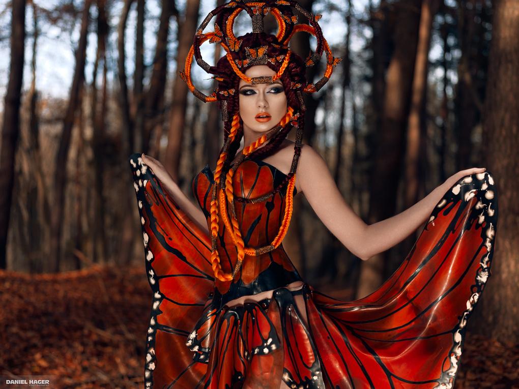 Monarch by Daniel Hager