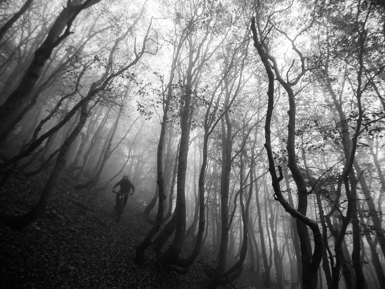 Scary lines by Andrej Grznar