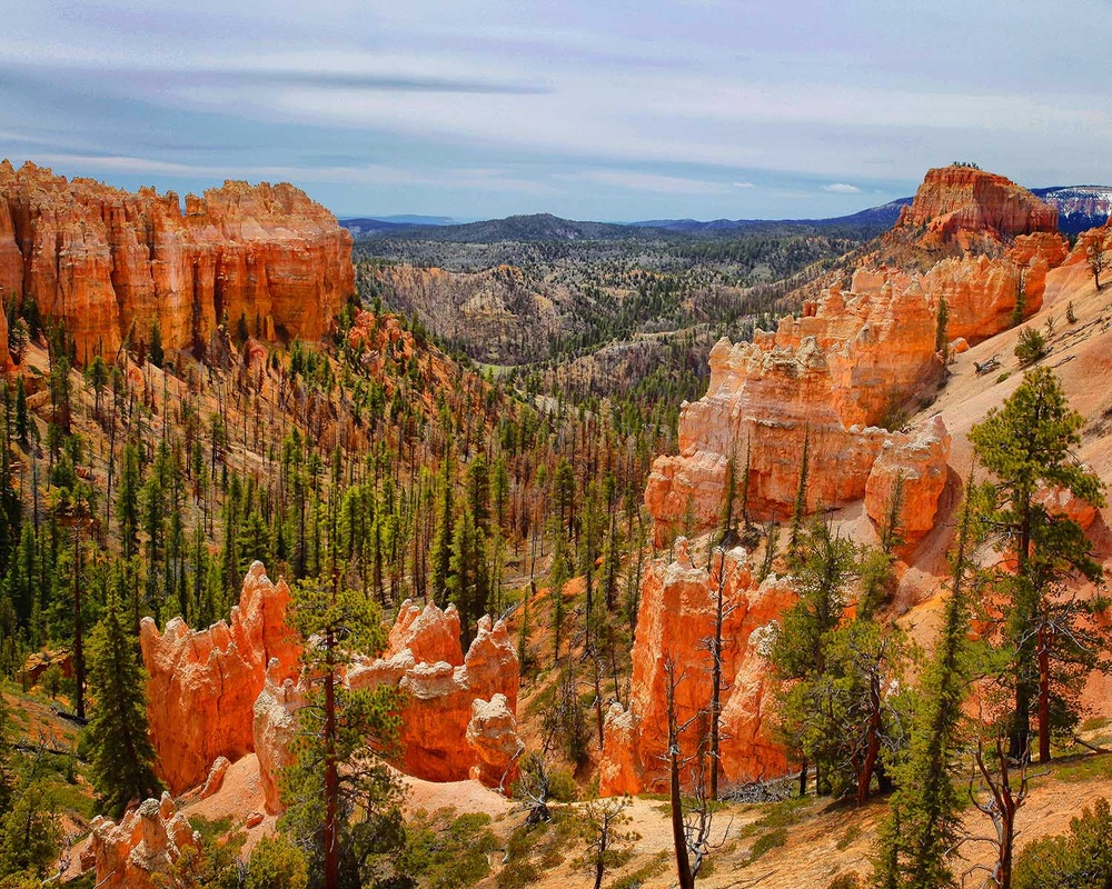 Bryce Canyon by M Russell