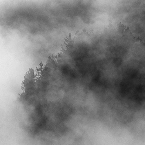 San Francisco fog by Craig Staples