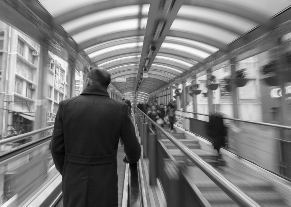 The Escalator by Elton Young