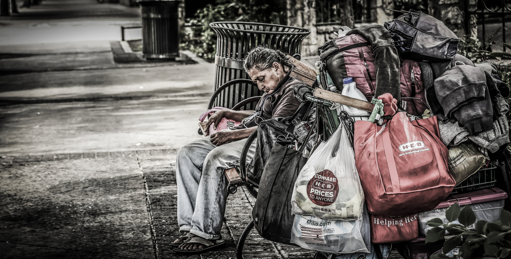 Life in a Cart by Michael Markovitch