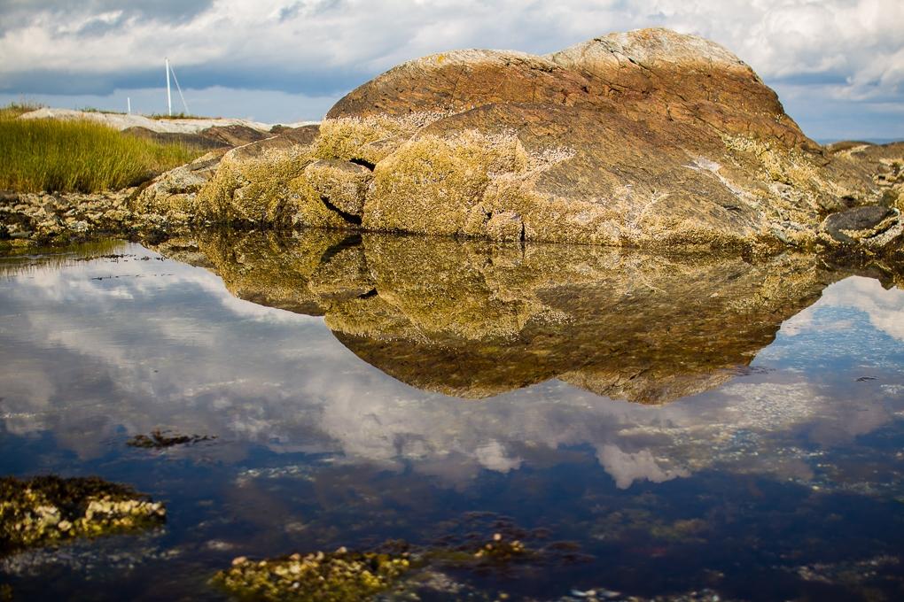 Low Tide in Maine by Kian McKellar