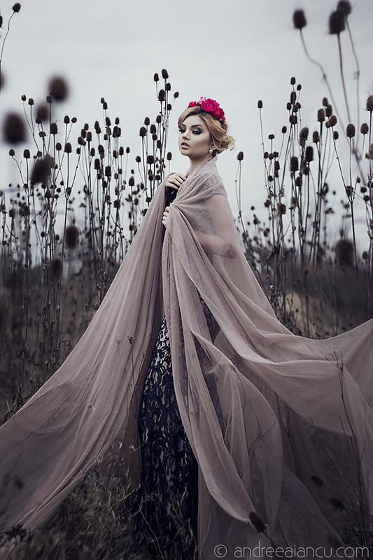Winter Dusk by Andreea Iancu
