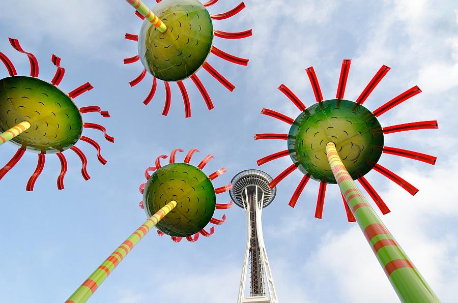 Seattle Flowers by Walt Polley