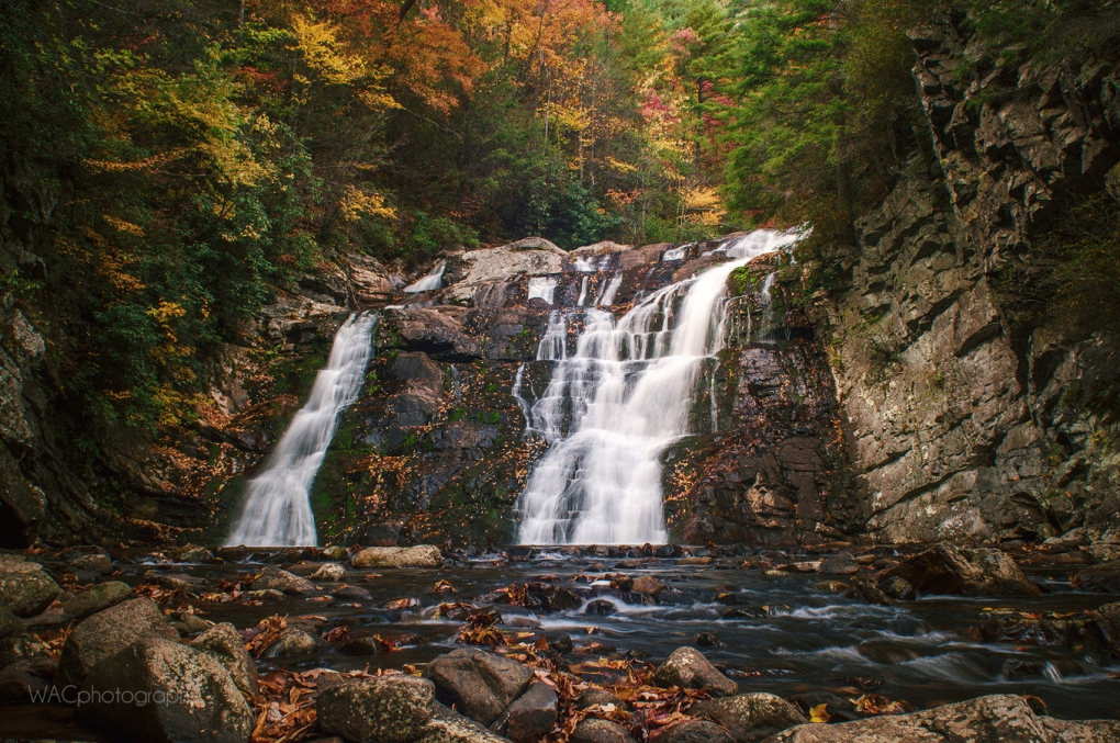 Laurel Fork Falls by Adam Collins