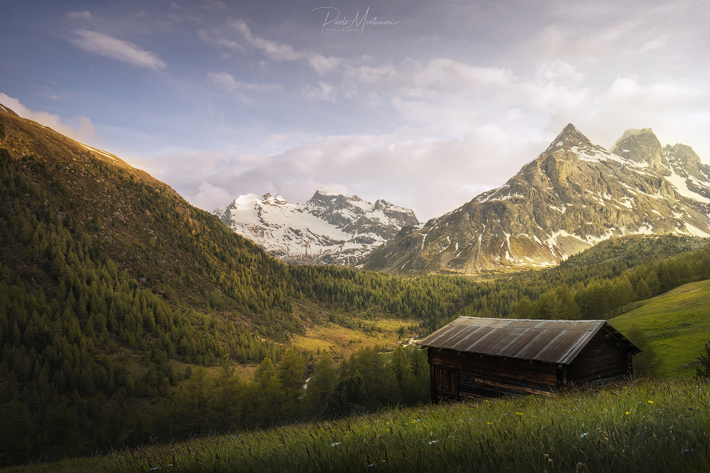 Spring Is Coming by Paolo Montanari