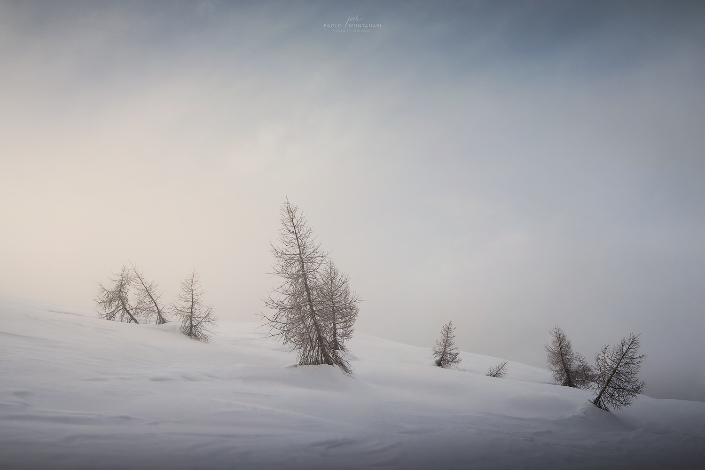 Mountain Morning by Paolo Montanari