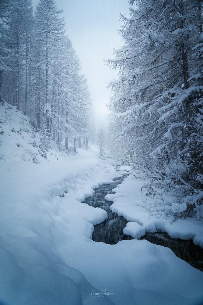 Snow Light by Paolo Montanari