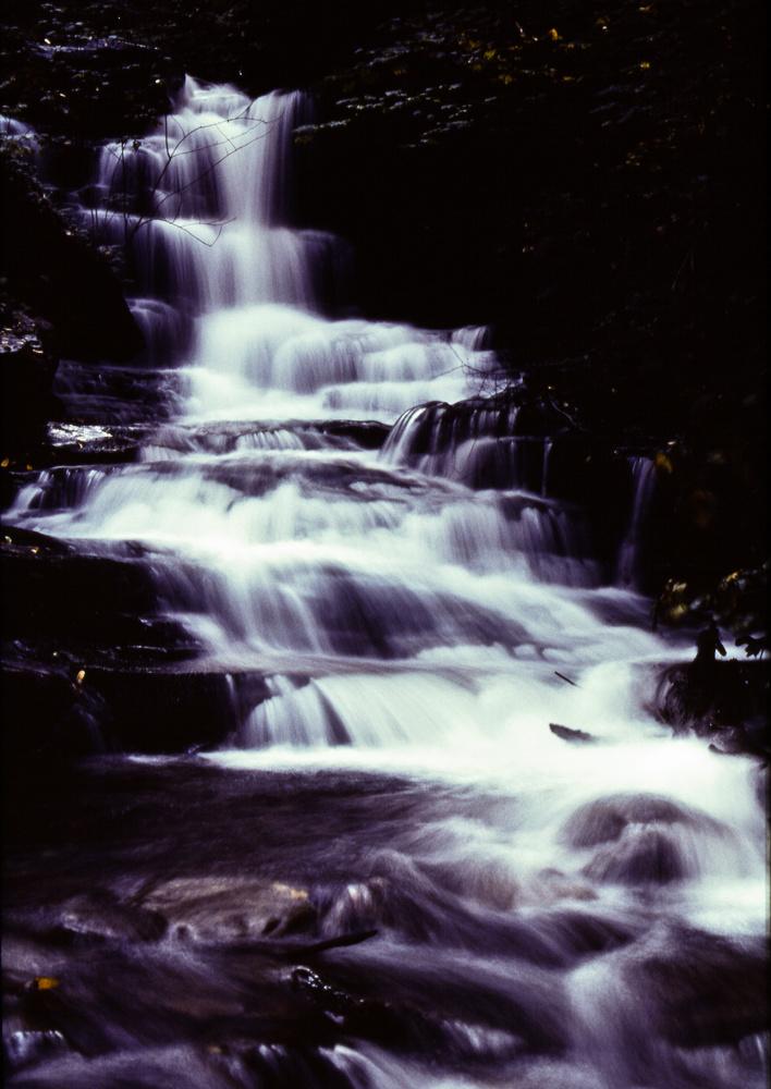 Rickett's Glen Waterfall - Monochrome by Jeff Burian