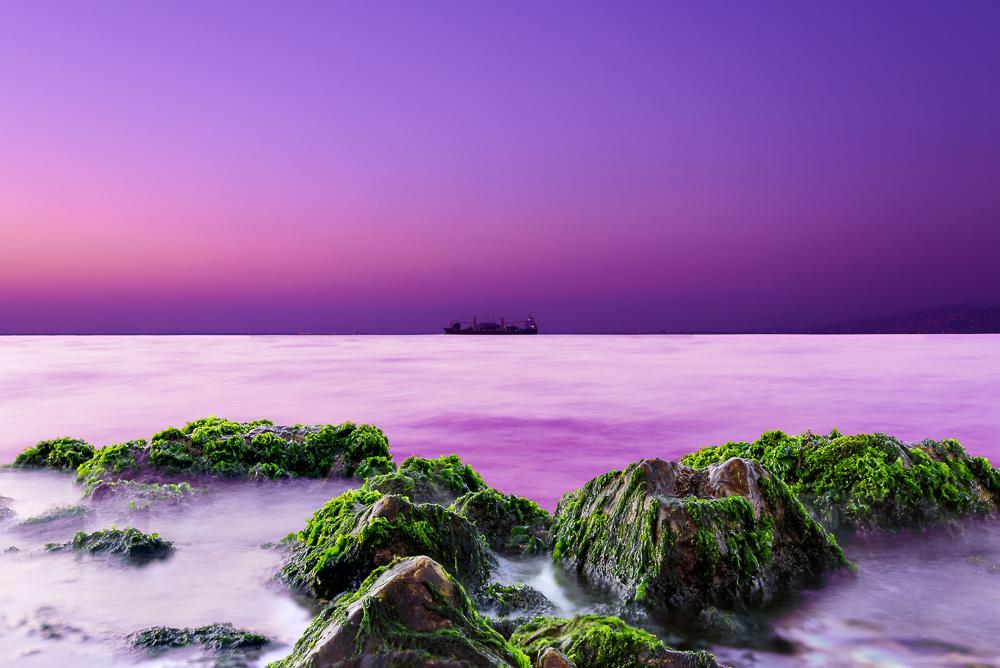 A Surreal Voyage by Ozden Gumus