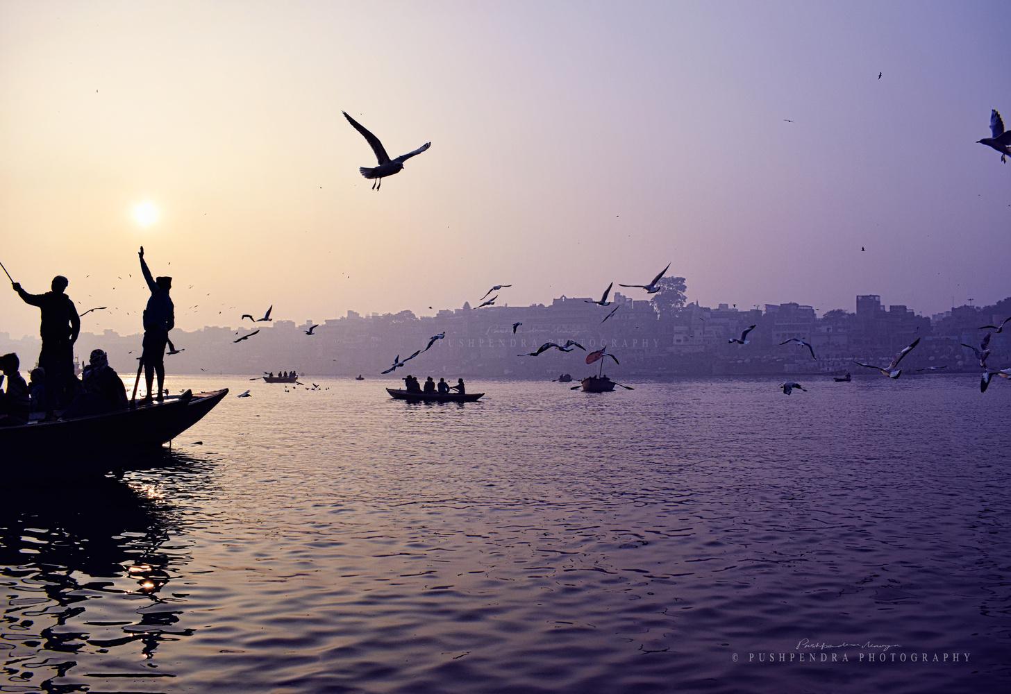 Morning .... by pushpendra maurya