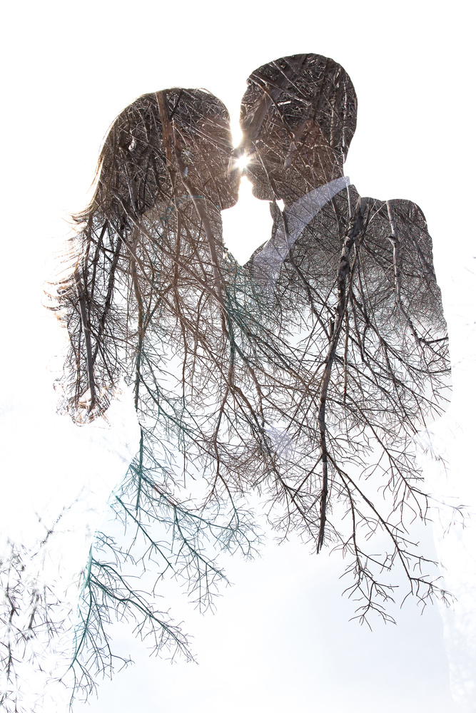 the root of love by Carlos Garcia