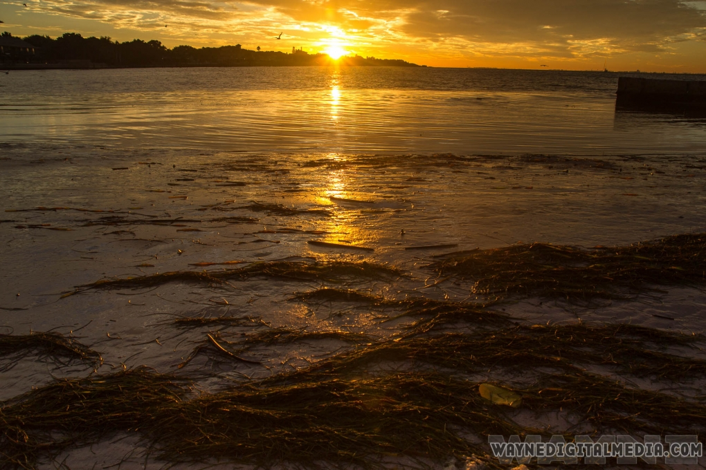 Sunset by Dwayne Crawford