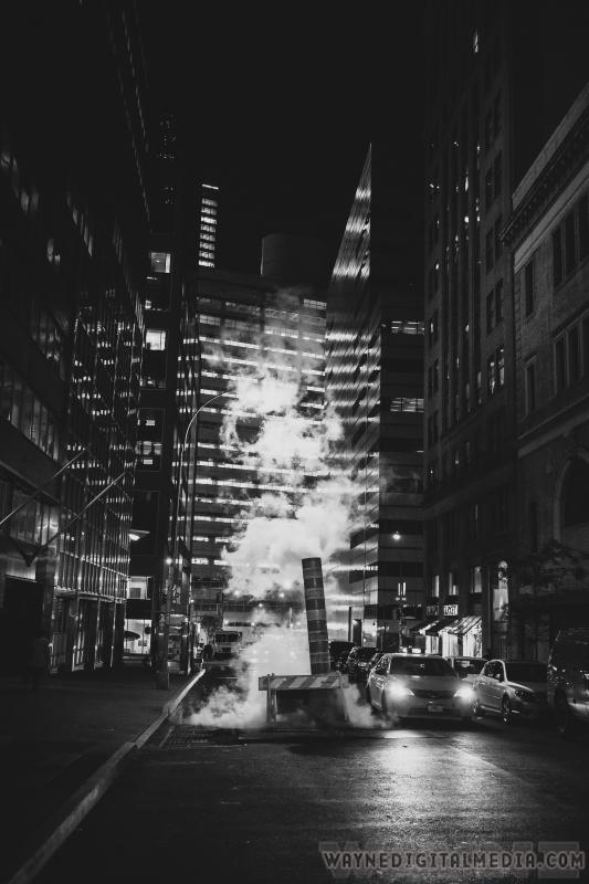 Tribeca by Dwayne Crawford