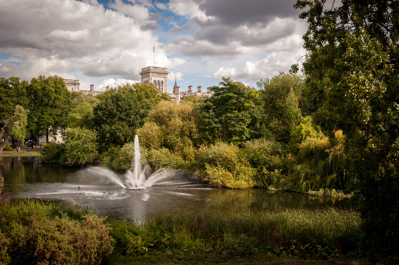 St James' Park by Richard Downs