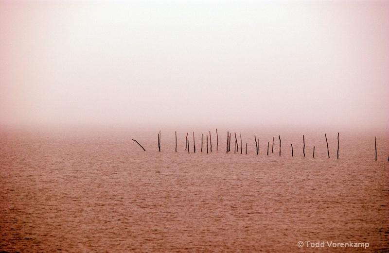 Sticks by Todd Vorenkamp