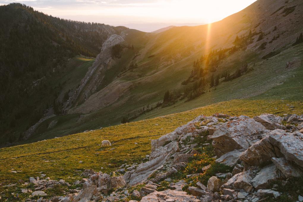 Bridger Range Sunset by Seth Neilson