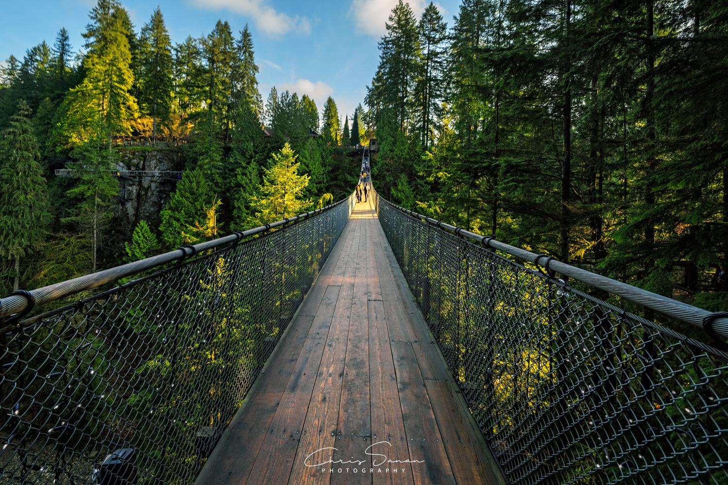 The Suspension Bridge of Capilano by Chris Sanan