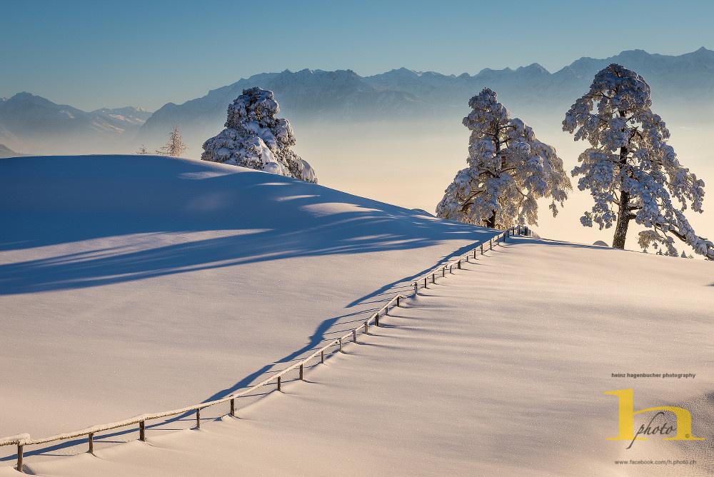 Winter Morning by Heinz Hagenbucher
