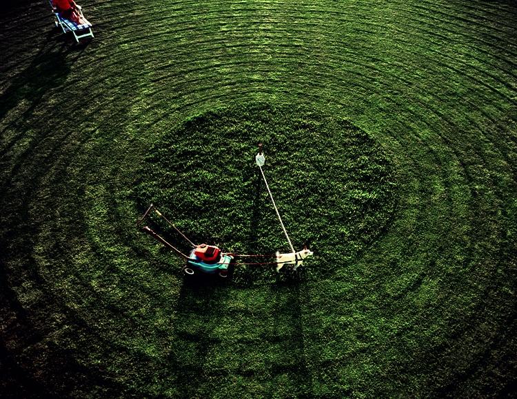 Guinness Lawnmower by Julian Watt